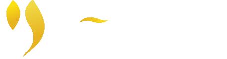 Logo - mv nevada ở đâu