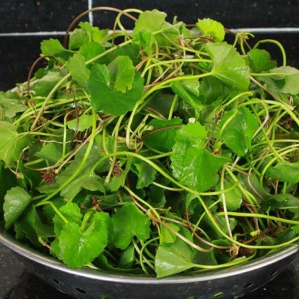 các loại rau giảm cân nhanh nhất, các loại rau giảm cân nhanh, những loại rau giảm cân nhanh, các loại rau củ giúp giảm cân, các loại rau giúp giảm cân nhanh, các loại rau quả giúp giảm mỡ bụng, các loại rau giảm cân