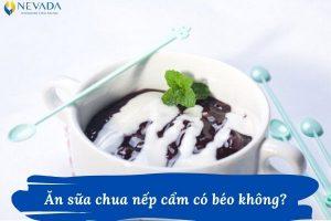1 cốc sữa chua nếp cẩm bao nhiêu calo? Ăn sữa chua nếp cẩm có béo không? Đáp án sẽ khiến bạn phải giật mình