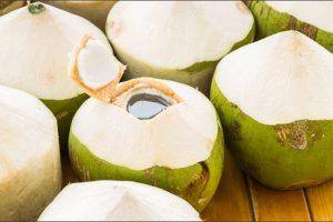 Uống nước dừa có giảm cân được không mà chị em cứ đua nhau thực hiện?