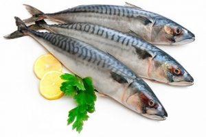 SỰ THẬT 100g cá thu bao nhiêu calo? Ăn cá thu có giảm cân?
