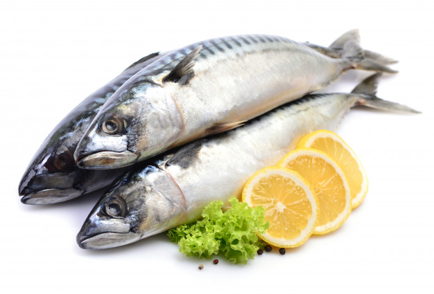 cá thu bao nhiêu calo, 100g cá thu bao nhiêu protein, 100g chả cá thu bao nhiêu calo, 100g cá thu kho bao nhiêu calo, 100g cá thu chứa bao nhiêu calo, calo trong cá thu, cá thu có bao nhiêu calo, cá thu chứa bao nhiêu calo, cá thu sốt cà chua bao nhiêu calo