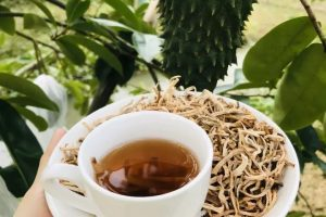 [Tiết lộ điều ít ai biết] Uống trà mãng cầu xiêm có giảm cân không? Tại sao trà mãng cầu được coi là thần dược?